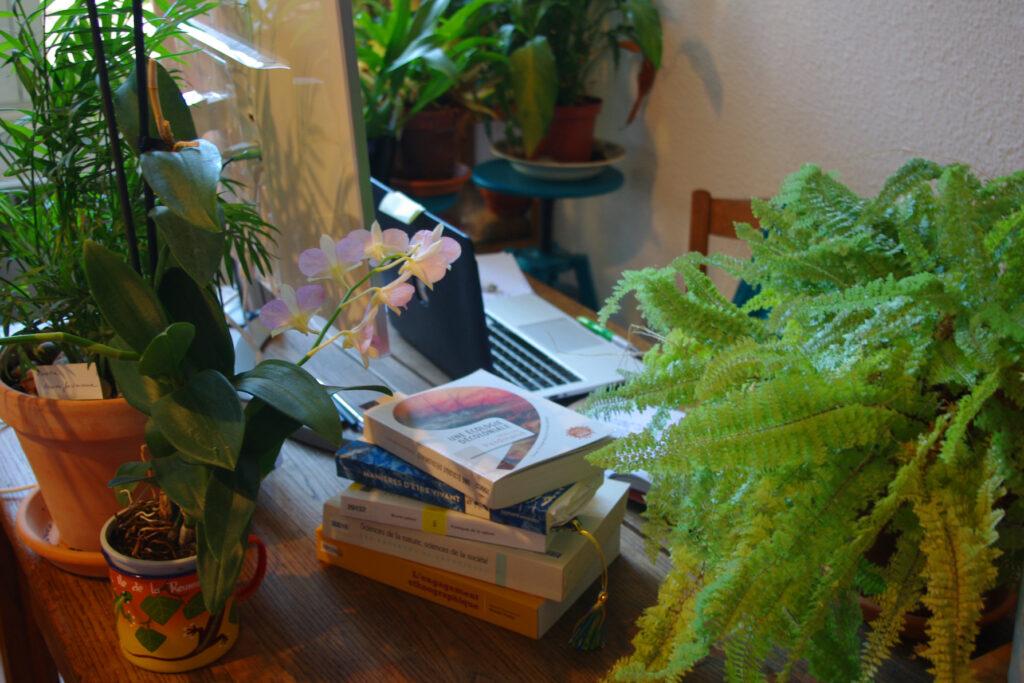 Bureau de la chercheuse en confinement, il est recouvert de plantes, de livres, d'un ordinateur portable et d'un écran.