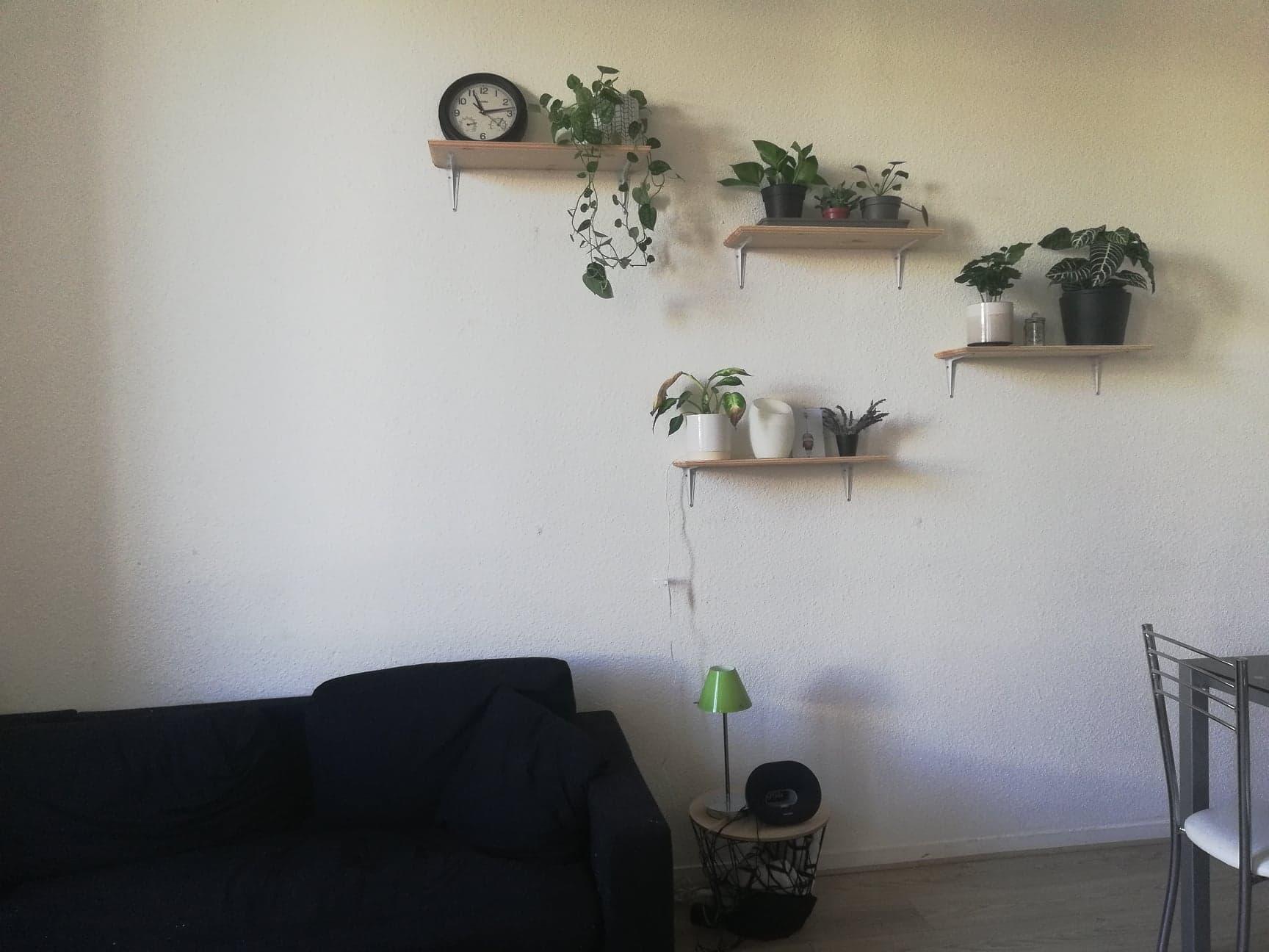 Il s'agit d'une photo d'un salon. On y retrouve un grand canapé noir avec, à côté, un petit meuble où une lampe et une enceinte y sont posées. Sur le grand mur blanc sur lequel le canapé est adossé, 4 étagère en bois ont été installées. Par-dessus de multiple plantes vertes décorent la pièce. Sur la plus haute, une horloge et un lierre dont les feuille pendent.