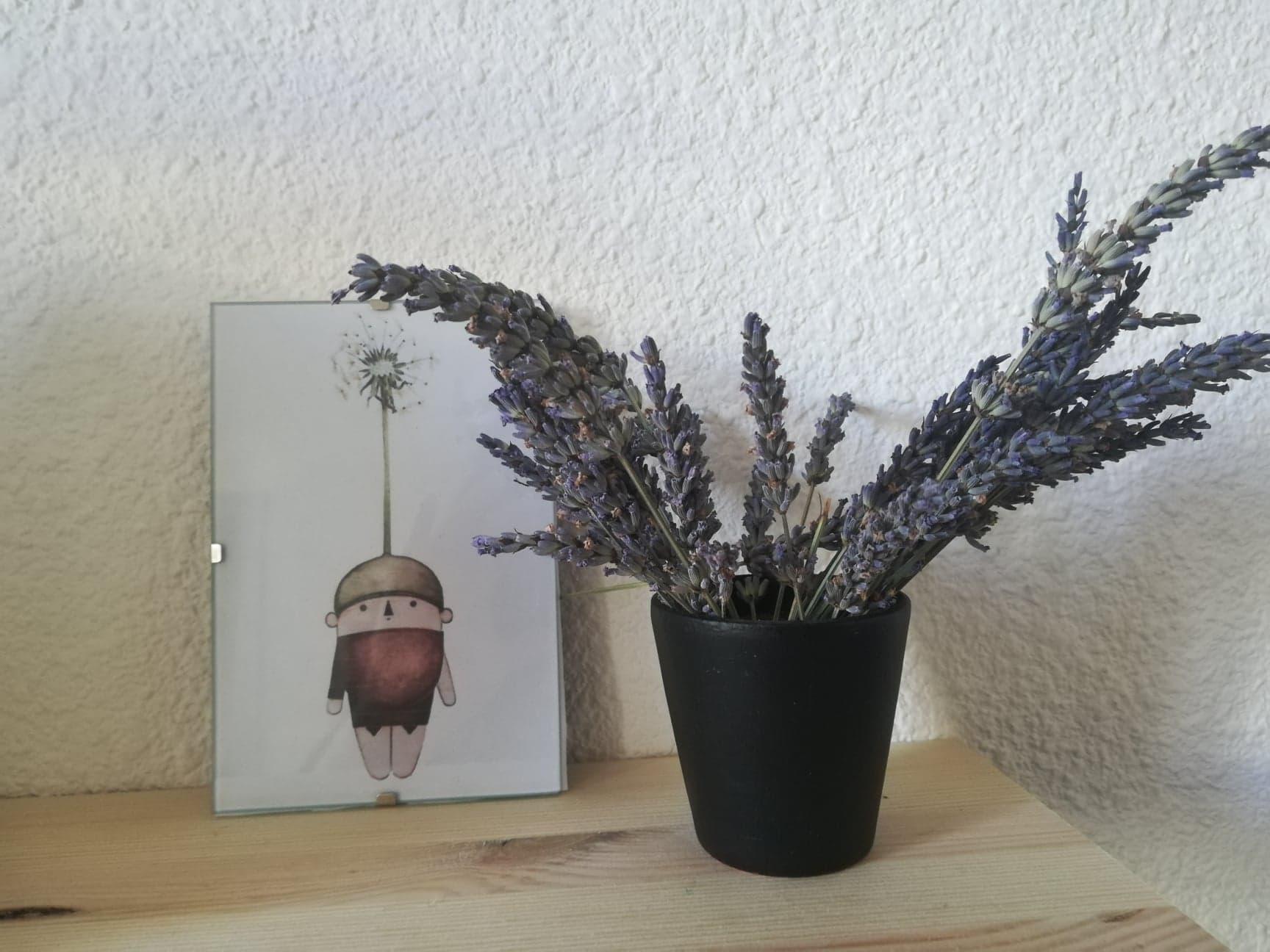 Sur un étagère en bois un petit pot de fleur noir héberge un bouquet de lavande. À côté, un cadre photo met en valeur un dessin. Celui-ci représente un petit personnage avec une sorte de chapeau pissenlit, il a l'air de voler.