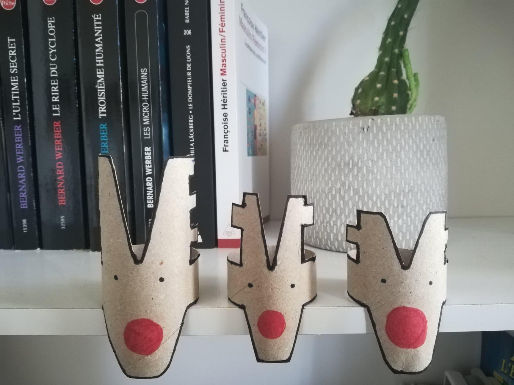 Trois petit rennes fabriqués avec des rouleaux de Sopalin® sont déposés sur le bord d'une étagère. Ils ont de petits points noirs à la place des yeux et un gros nez rouge. Derrière eux on peut voir des livres exposés et un cactus.