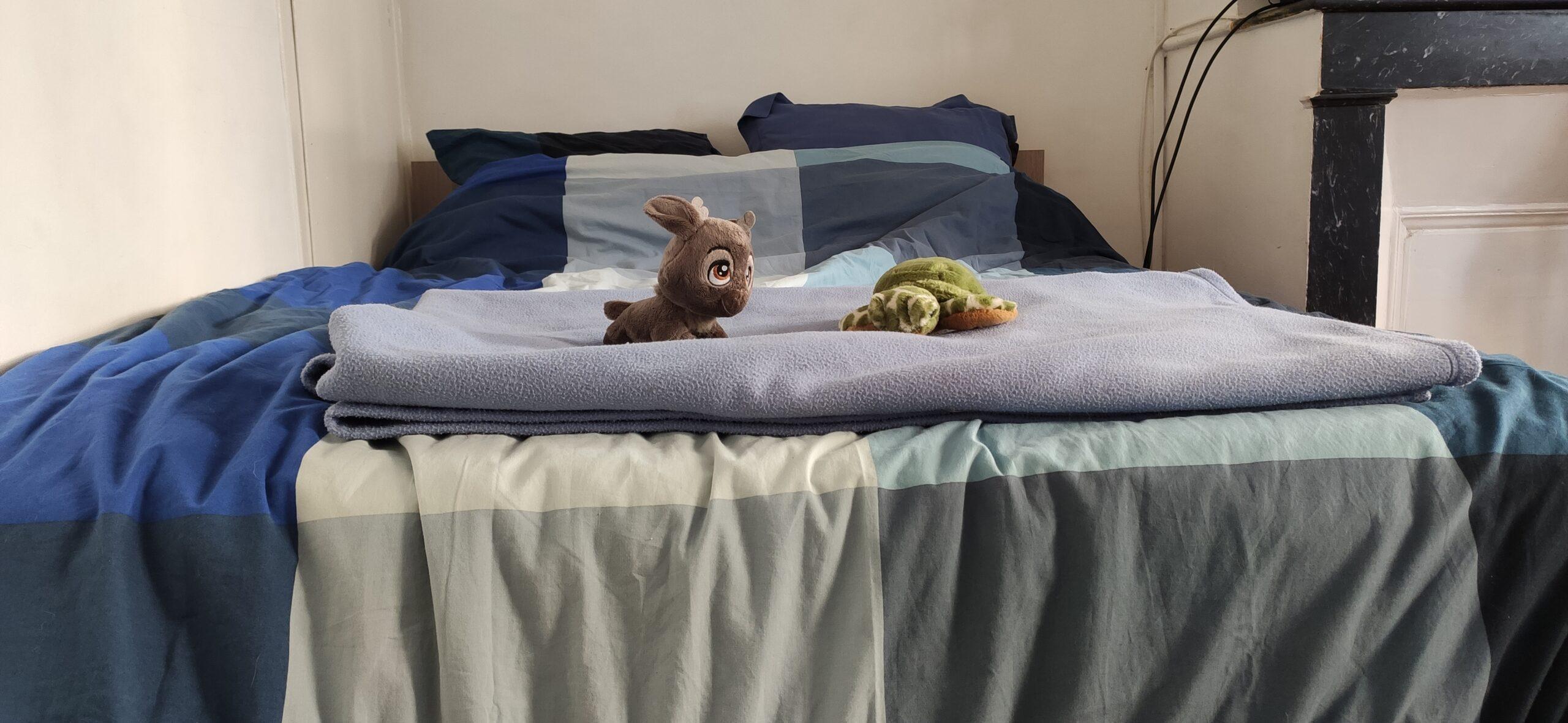 Un grand lit bleu, un plaid bleu. Une peluche de tortue verte et une peluche de bébé renne sont posés sur le lit.