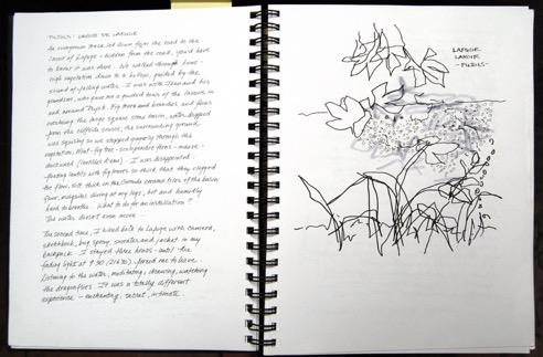 Une double page extraite d'un livre d'artiste de Deborah Bowman. Sur la page de gauche, du texte et des croquis de végétaux sur la page de droite.