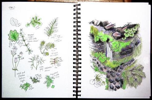 Une double page extraite d'un livre d'artiste de Deborah Bowman. On peut voir des croquis représentant différentes plantes sur la page de gauche et un paysage sur la page de droite.