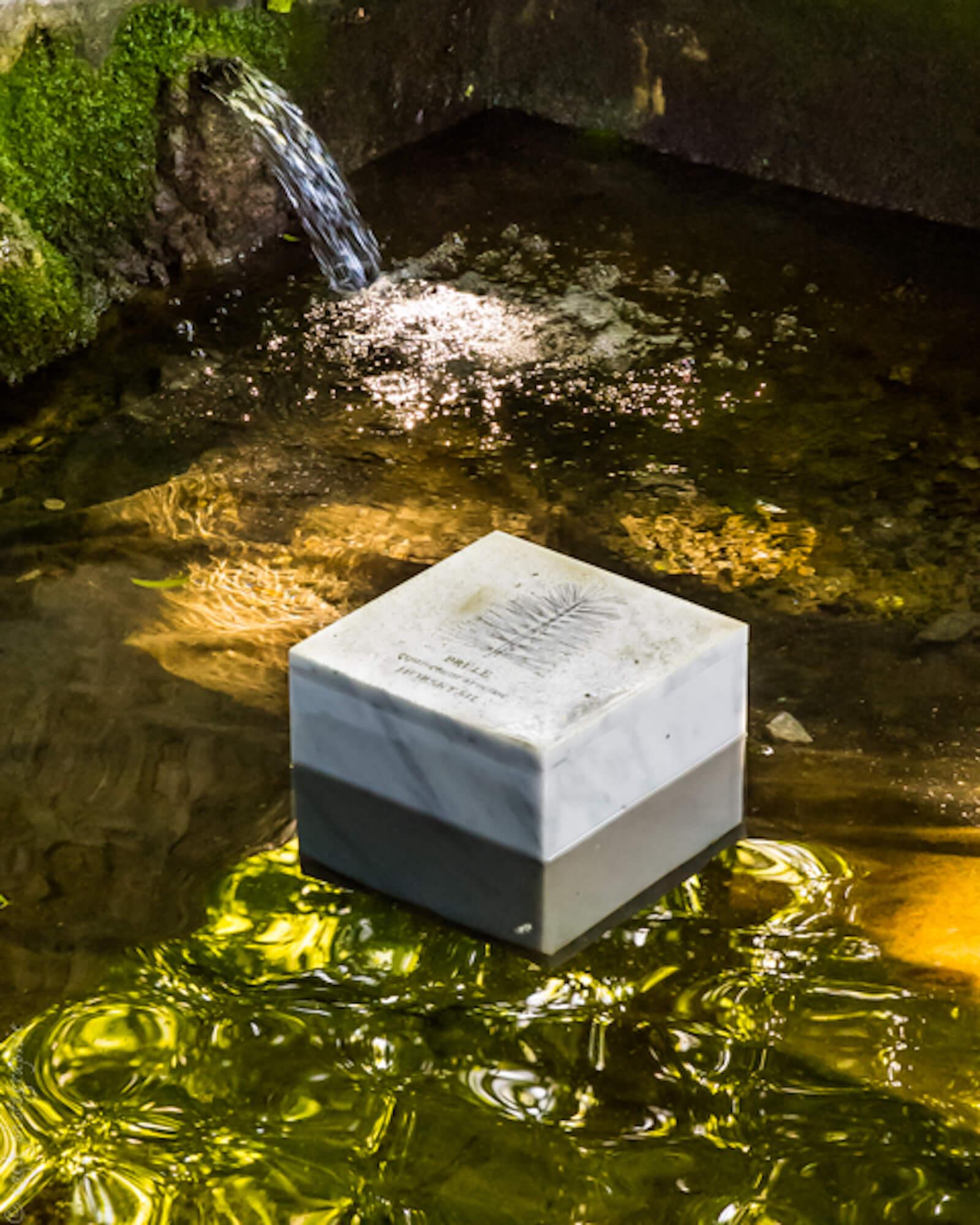 Bloc de marbre gravé posé dans l'eau d'un lavoir en pierre. L'eau reflète la verdure de la végétation.