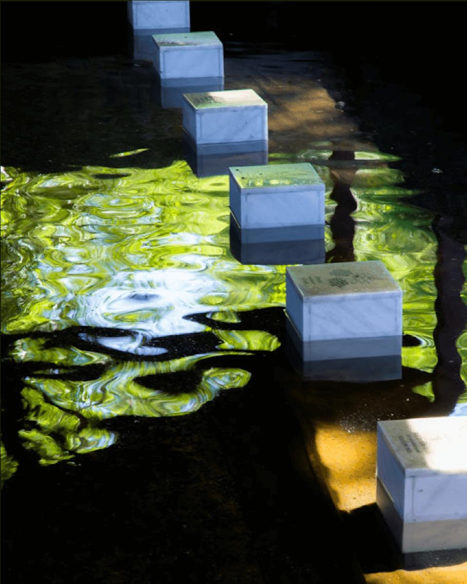Six blocs de marbre gravés posés dans l'eau d'un lavoir. L'eau sombre reflète la verdure de la végétation.