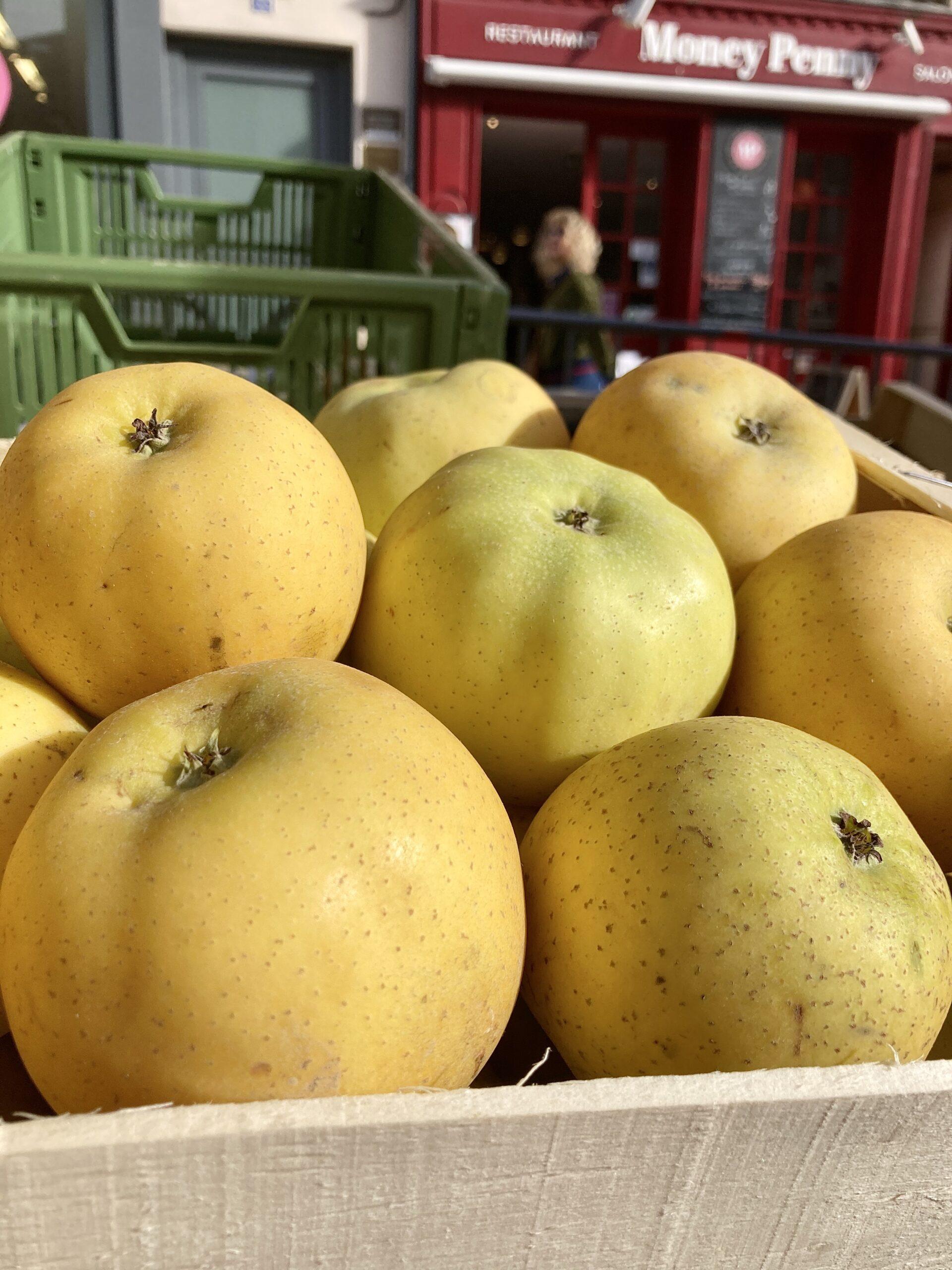 Zoom sur des pommes