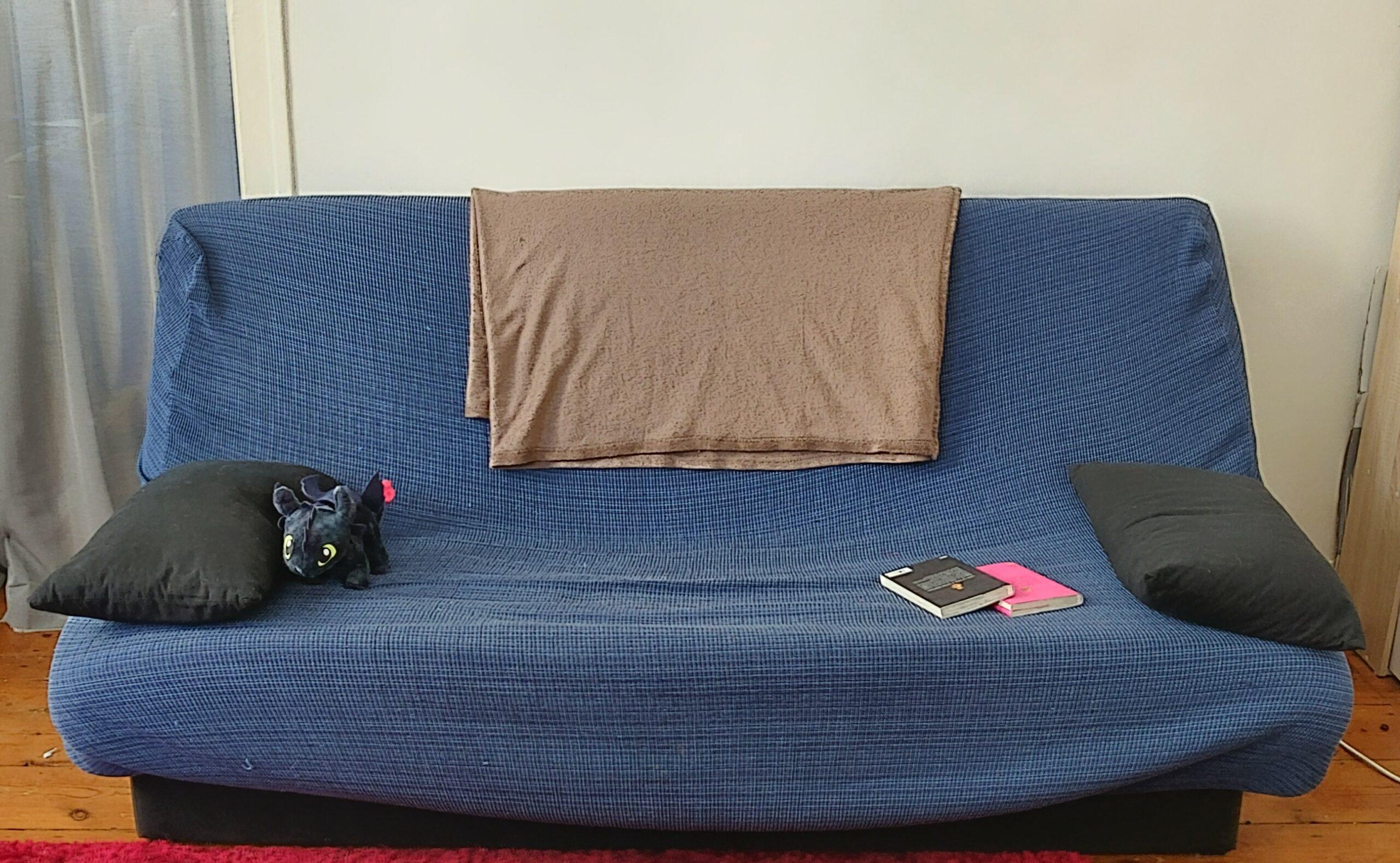 Au centre de la photo : un canapé bleu où est posé un plaid marron plié, au centre. Sur le canapé il y a deux coussins noirs (un à chaque extrémité), une peluche de dragon et deux livres (un rose et un noir).