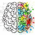 L'image représente un cerveau dessiné vu du dessus. Ses deux hémisphères sont séparés l'un de l'autre. Du côté gauche, on trouve un enchevêtrement de chiffres, de lettres, de formules mathématiques et de figures géométriques et scientifiques, qui symbolisent l'esprit scientifique. Le côté droit, quant à lui, présente des tâches de couleur de toutes formes, comme de la peinture jetée sur cet hémisphère. Cela représente la créativité, l'inventivité, le côté artistique du cerveau.
