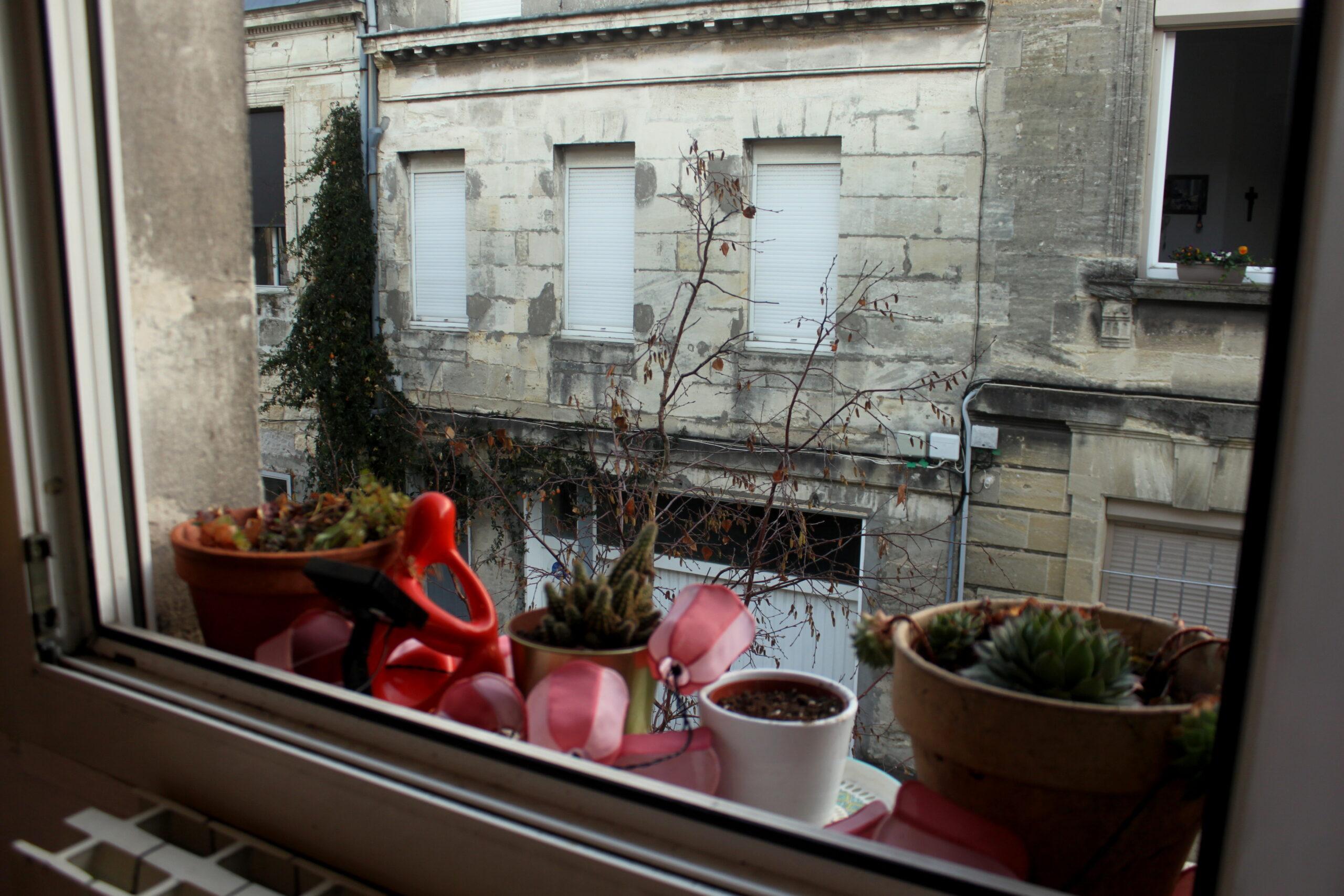 Une vue de l'extérieur de l'appartement. Il y a des plantes et des lumières sur le bord de la fenêtre. En face il y a un autre bâtiment. On peut voir dans une pièce des voisin·es.